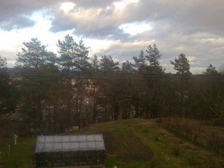 Natural envirovment from my window :) solution